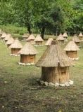 Colmenas de madera de la abeja del grupo con el tejado cubierto con paja Fotos de archivo libres de regalías