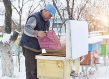 Colmenas del aislamiento del apicultor con las abejas en invierno Imagenes de archivo