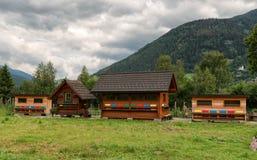 Colmenas en Austria, apicultura foto de archivo