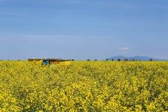 Colmenas en campo floreciente del canola durante primavera Imágenes de archivo libres de regalías