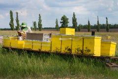 Colmenas en el colmenar con las abejas Casa para las abejas Cultivo de la abeja Fotos de archivo libres de regalías