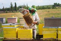 Colmenas en el colmenar con las abejas Casa para las abejas Cultivo de la abeja Fotografía de archivo