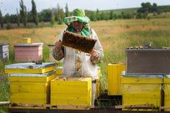 Colmenas en el colmenar con las abejas Casa para las abejas Cultivo de la abeja Fotografía de archivo libre de regalías