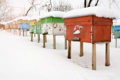 Colmenas en el colmenar cubierto con nieve en invierno Imagen de archivo
