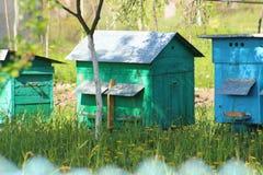 Colmenas en el jardín Foto de archivo libre de regalías