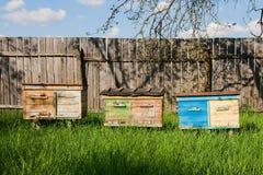 Colmenas en el jardín de la fruta en Ucrania Imagenes de archivo