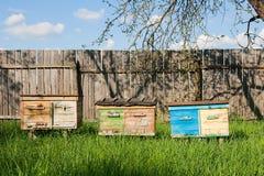 Colmenas en el jardín de la fruta en Ucrania Fotografía de archivo