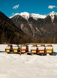 Colmenas en montañas nevosas Fotos de archivo