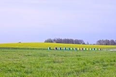 Colmenas en un campo Imagen de archivo
