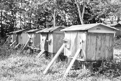 Colmenas en un colmenar al aire libre Imagen de archivo