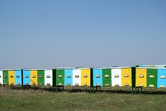 Colmenas en un colmenar con volar de las abejas Apicultura Imagen de archivo