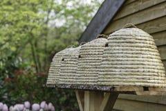Colmenas en un jardín Foto de archivo