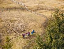 Colmenas en un prado de la montaña Foto de archivo libre de regalías