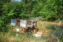 Colmenas en un remolque en el bosque, apicultura del coche Imagen de archivo libre de regalías
