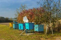 Colmenas para las abejas Foto de archivo libre de regalías