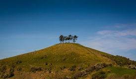 Colmer's Hill in Dorset, England Stock Images