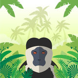 Colobus on the Jungle Background. Flat Vector image of the Colobus on the Jungle Background Stock Photography