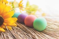Colocação de ovos da páscoa colorida em uma palha Fotografia de Stock Royalty Free