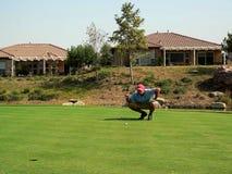 Colocação do jogador de golfe Imagem de Stock
