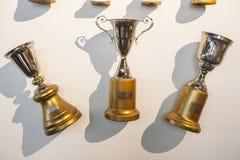 Coloca o troféu enganchado na parede Foto de Stock