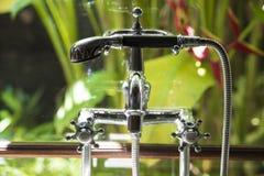 Colocación del cuarto de baño delante de la selva tropical Imagenes de archivo