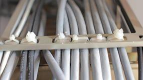 Colocación en escaleras del cable de UTP Fotos de archivo