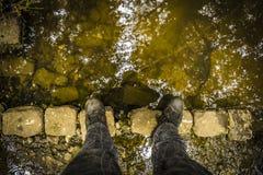 Colocando en las piedras viejas dispuestas como puente Fotos de archivo libres de regalías