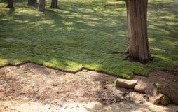 Colocando a grama para o gramado novo do jardim foto de stock