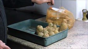 Colocando las patatas de semilla listas para brotar metrajes