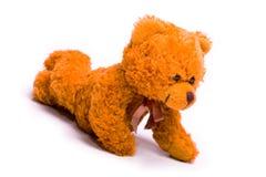 Colocando o urso Fotografia de Stock