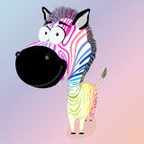 Colodful zebra Stock Photo