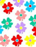 Coloful-Blumenhintergrund Lizenzfreies Stockbild