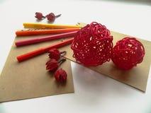 Coloful-Filzstiftmarkierungen und -Trockenblumen Lizenzfreie Stockbilder