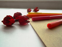 Coloful-Filzstiftmarkierungen und -Trockenblumen Stockfotos