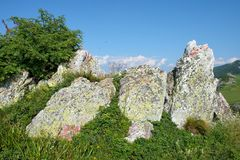 Coloful Rocks And Grass. Coloful rocks on grass in Montenegro royalty free stock image