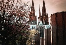 Cologne Cathedral in Cologne, Germany. stock photos
