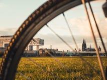 Cologne cityscape med den Cologne domkyrkan, Rheinauhafen och kranen royaltyfri fotografi