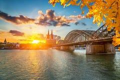 Cologne på solnedgången arkivfoto
