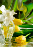 Cologne/perfume bottles. Against yellow tulips Stock Photo