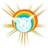 Colomba con il Rainbow Immagine Stock