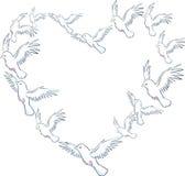 Colomba del cuore Immagine Stock Libera da Diritti