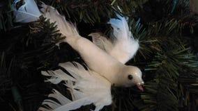 Colomba dello spirito di Natale Fotografia Stock