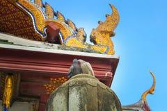 Colomba due Stando sul tetto del tempio Wat Suthat Il giorno A Bangkok thailand immagine stock libera da diritti