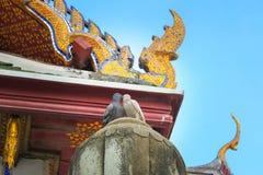 Colomba due Stando sul tetto del tempio Wat Suthat Il giorno A Bangkok thailand fotografia stock libera da diritti