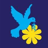 Colomba e fiore di pace Fotografie Stock Libere da Diritti