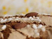 Colomba pasquale stock photography