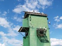 Colombaia e cielo Fotografia Stock Libera da Diritti