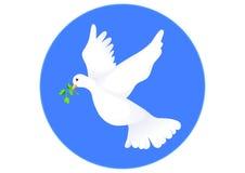 Colombe de paix Photographie stock libre de droits