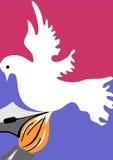 Colombe de paix Photos stock
