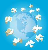 Colombe di pace Fotografia Stock